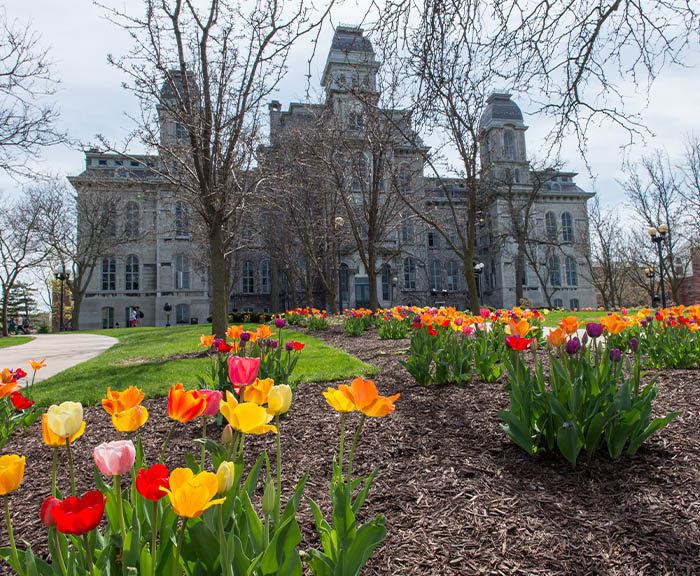 Vibrant flowers blooming in front of Hall of Languages